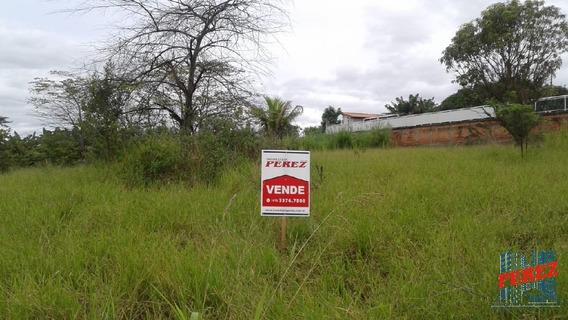 Chácaras_sítios_fazendas Para Venda - 13650.3925