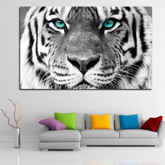 Cuadros Decorativos Tigre Ojos Azules