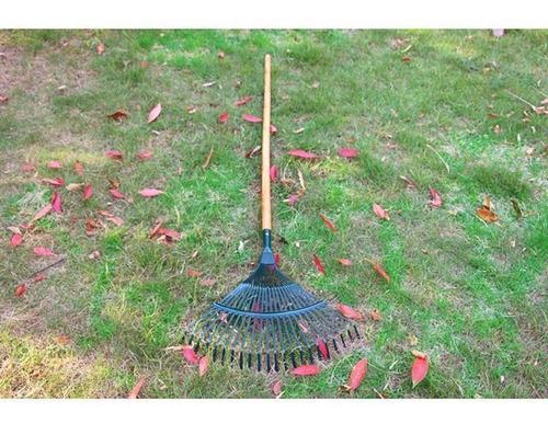 Imagem 1 de 4 de Limpeza De Quintal E Jardinagem
