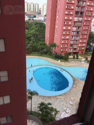 Apartamento Para Venda, 3 Dormitórios, Casa Verde - São Paulo - 2115