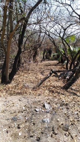 Imagen 1 de 6 de Terreno En Venta Ubicado En Club De Golf Hacienda San Gaspar, Jiutepec, Morelos
