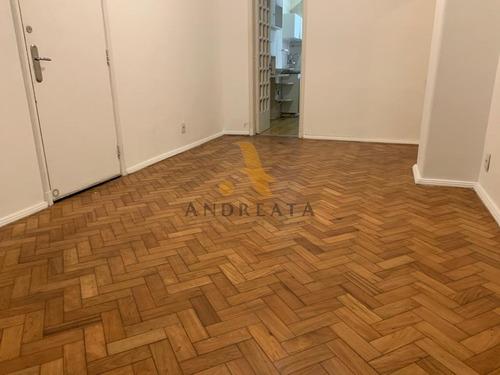 Apartamento Em Ipanema Com 1 Suíte Aluguel - Mix0010a - 69027448