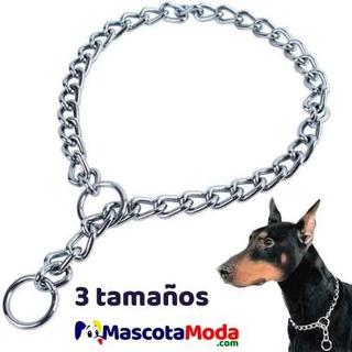 Collar De Ahogo O Educación Para Perros Recomendado
