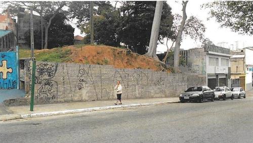 Imagem 1 de 4 de Terreno À Venda, 910 M² - Vila Ivone - São Paulo/sp - Te0342