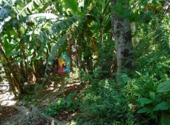 Terreno-à Venda-jardim Botânico-rio De Janeiro - Bouf00002