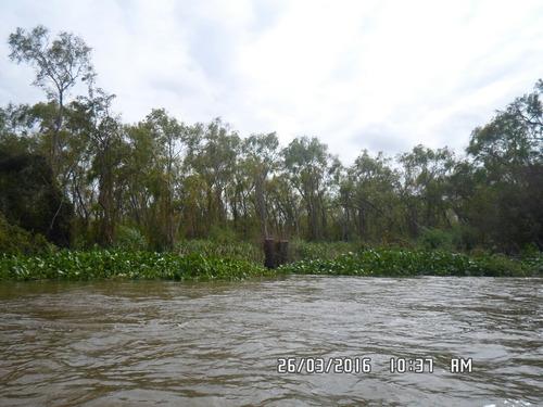 Imagen 1 de 7 de Entre Rios Delta Ibicuy , 249 Ha Rio Gutierrez Y Rio Uruguay