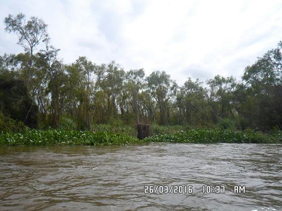 Entre Rios Delta Ibicuy , 249 Ha Rio Gutierrez Y Rio Uruguay