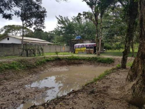 Chácara No Litoral Sul, Com 2 Dormitórios Em Itanhaém/sp