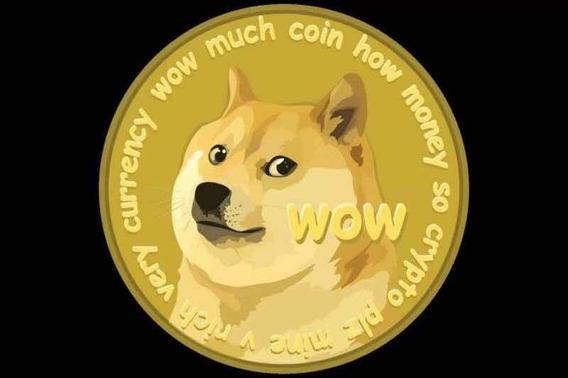 1000 Dog Os Mais Baratos