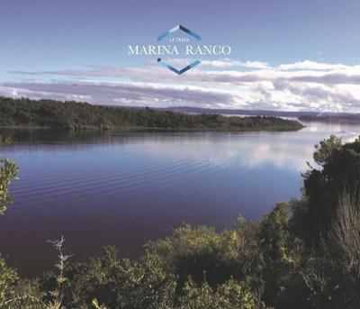 Sitio En Venta En Lago Ranco
