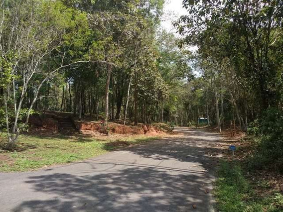 Terreno À Venda - 3.650 M2 - Condomínio Arvoredo - Nova Lima (mg) - 3278