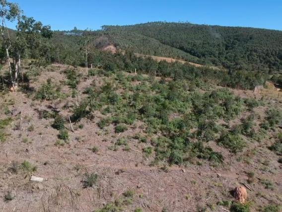 09b- Vendo Terreno Com Boa Topografia