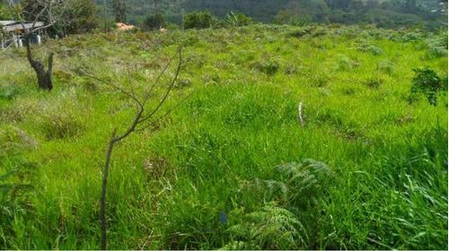Terreno Venda  Área Rural Piedade Sp - 04980-1