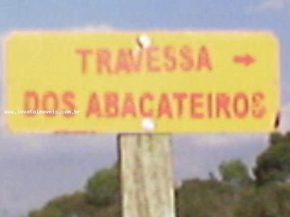 Terreno Para Venda Em Porangaba, Aclimação - El02997