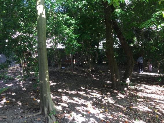 Casa À Venda Por R$ 800.000 - Santa Rosa - Niterói/rj - Ca0337