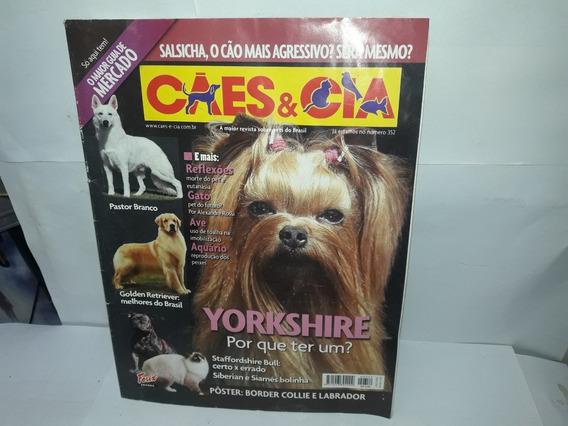 Livro Cães & Cia Yorkshire Por Que Ter Um?