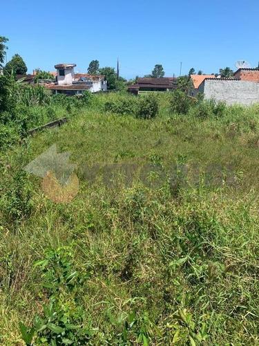 Imagem 1 de 5 de Terreno À Venda, 368 M² Por R$ 160.000 - Getuba - Caraguatatuba/sp - Te0084