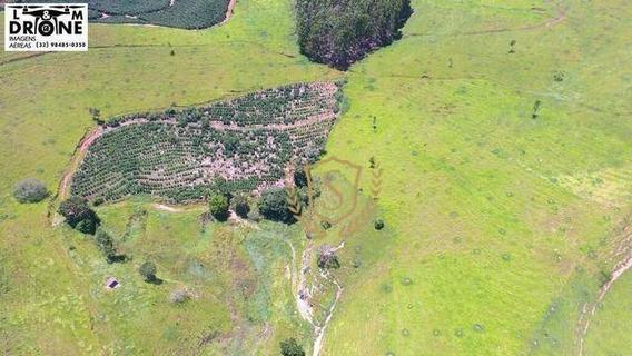 Fazenda À Venda, 677600 M² Por R$ 1.190.000,00 - Corrego São Felipe - Espera Feliz/mg - Fa0003