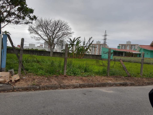 Terreno À Venda, 412 M² Por R$ 425.000,00 - Passa Vinte - Palhoça/sc - Te0831