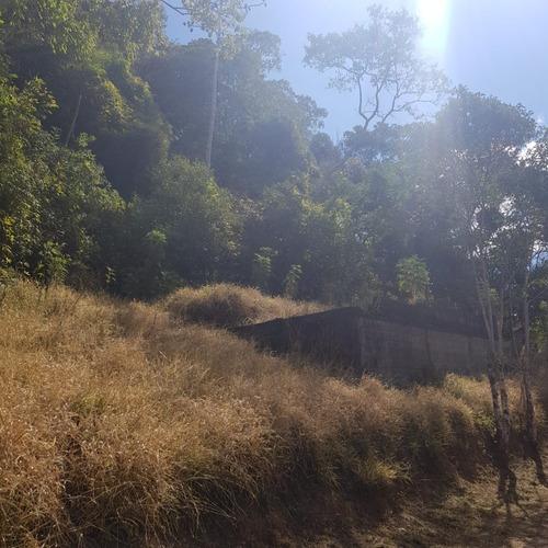 Imagem 1 de 14 de São Lourenço Da Serra/terreno C/riacho/gramado/ref: 05255