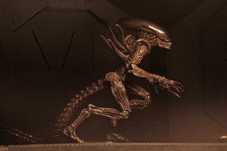 Neca - Aliens Series 14 - Xenomorph (alien Resurrection)