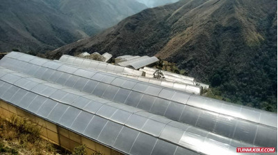 Haciendas - Fincas En Venta 04149448811 Finca En El Jarillo