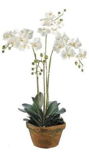 Decoracion De La Seda Phalaenopsis Planta Color Blanco