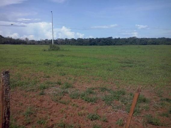 Fazenda Em Barra Do Ouro - To, Dupla Aptidão - 203