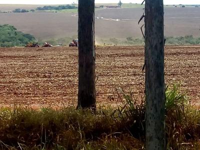 Fazenda A Venda Em Jaraguari - Ms (dupla Aptidão) - 815