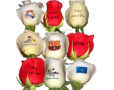 Rosas Personalizadas Floristeria Enamorados Envios Peluches