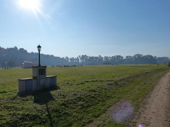 Lote 43 En Venta. 2000 M2. Santa Ines. Comarcas De Lujan.