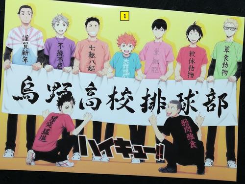 Posters A3 29x42cm Anime Haikyuu!! #1 / Niponmania