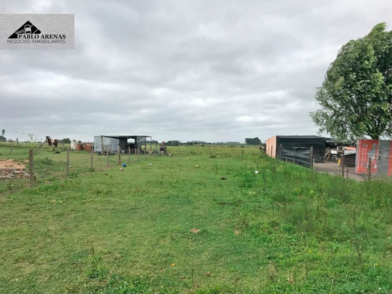 Terreno En Venta - Tarariras - Colonia #495
