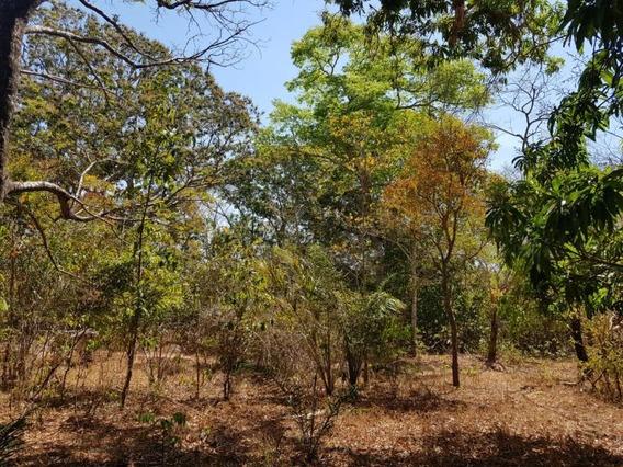 Fazenda A Venda Em Barra Do Ouro - To - 842