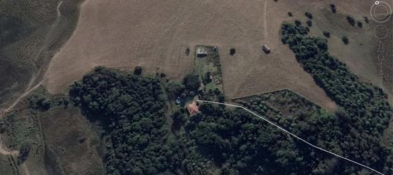 Fazenda Em Centro, Sentinela Do Sul/rs De 0m² À Venda Por R$ 27.268.000,00 - Fa237497