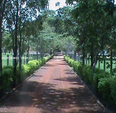 Fazenda Para Venda Em Cocalinho, Fazenda Em Cocalinho - Mt, Com 47.792 Hectares. - 7561