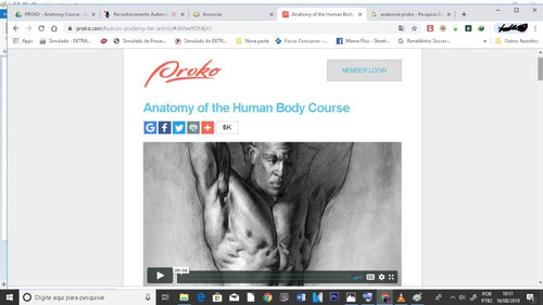 Imagem 1 de 5 de Curso De Desenho Anatomia - Proko 63gb Dvds