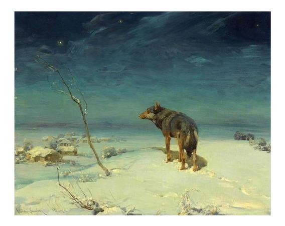 Lobo Solitário - Kowalski - 50x62 Tela Para Quadro