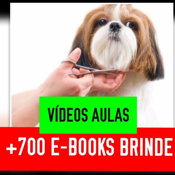 Aula Completo Banho E Tosa Cães Vídeoaulas 1 Dvd Pet