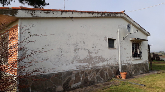 Fracción De Campo, 4 Hectáreas, Sobre Ruta 1