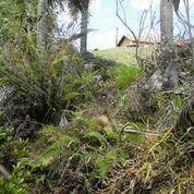 Imagem 1 de 30 de Terreno Residencial À Venda, Colinas Do Ermitage (sousas), Campinas. - Te0461