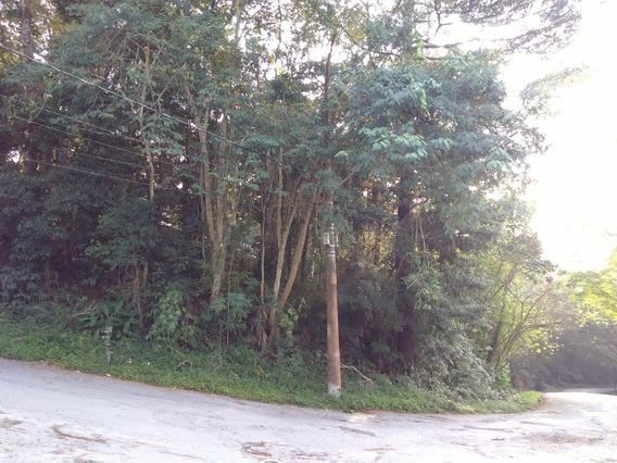 Terreno Em Condominio - Chacaras Bosque Do Embu - Ref: 6245 - V-6245