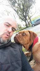 Guarderia, Estetica Y Paseos Caninos.