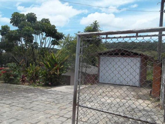Rural Para Venda, 0 Dormitórios, Rocinha - Guaratinguetá - 267