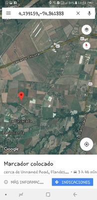 Finca Plana Con Quebrada De Agua Entre Espinal Y Flandes