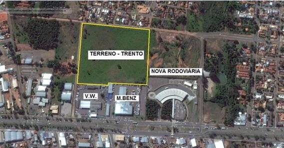 Terreno Comercial À Venda, Universitário, Campo Grande. - Codigo: Te0029 - Te0029