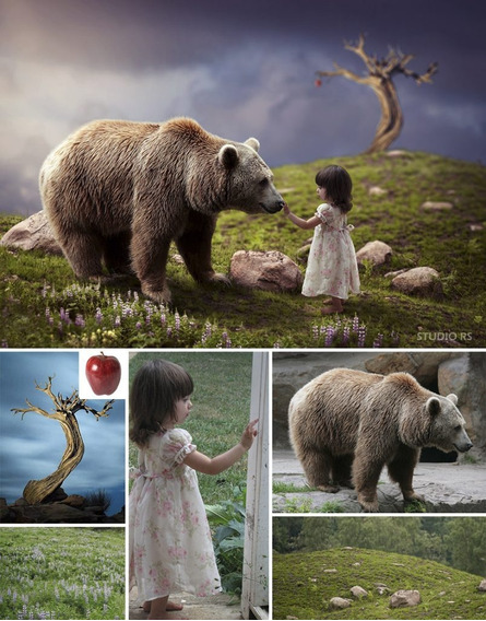 Criação, Edição De Fotos Design, Vídeo/aúdio, Temas/trilhas