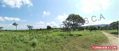 Venta Hacienda En Falcon Muncipio Jacura