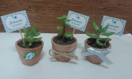 Recuerdos Suculentas Plantas Cactus Matrimonio Baby Shower