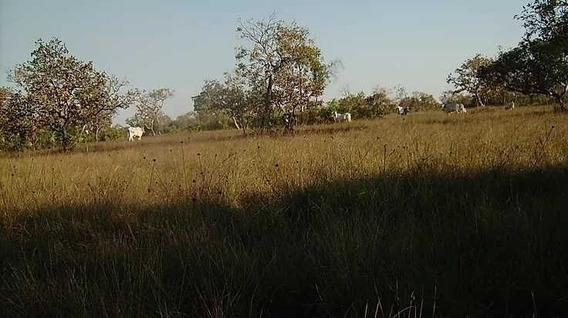 Fazenda Com 10.000 Hectares Cocalinho - 32138
